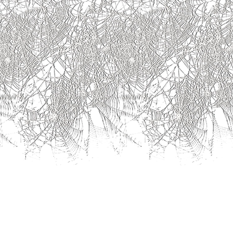 Spider web border 2