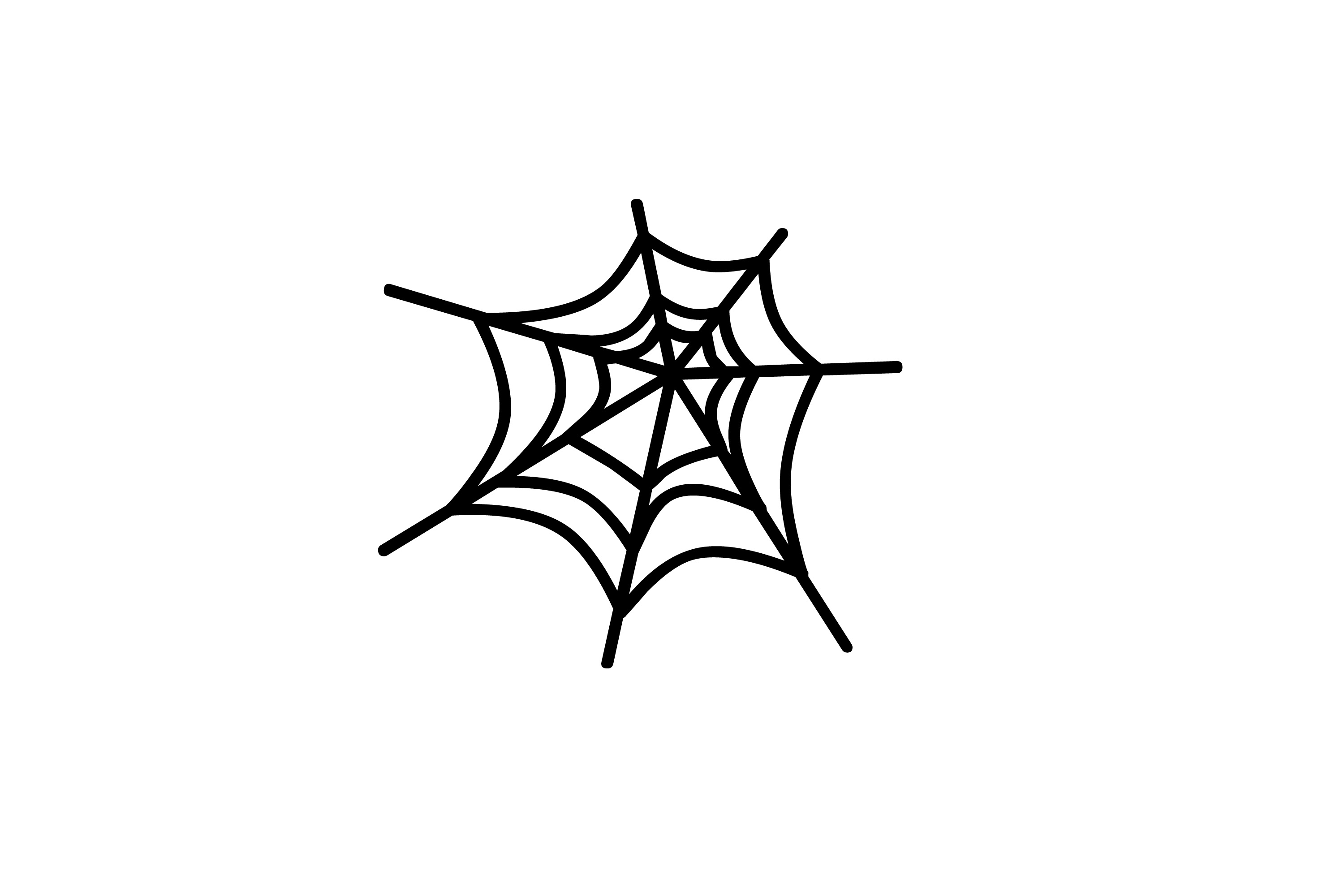 Spider web border clipart free images 4 5