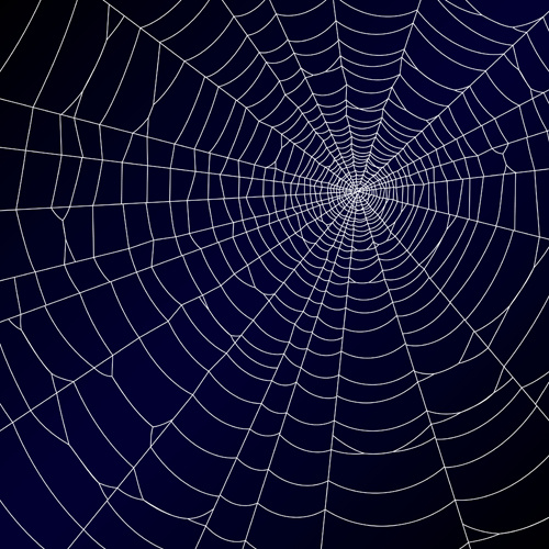 Spider web border free vector download 9 free for 5