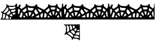 Spider web border sensationallychic boutique