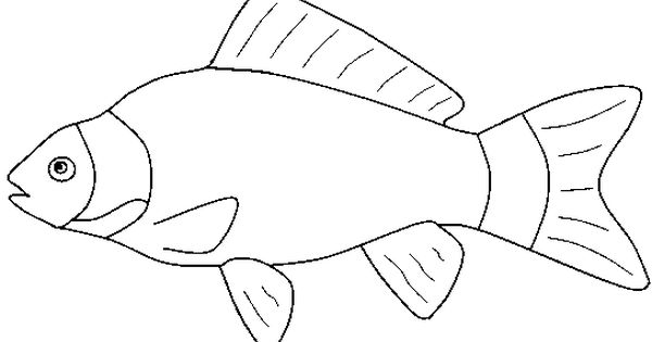 Fish black and white black and whit fish pictures to pin on pinsdaddy clip art