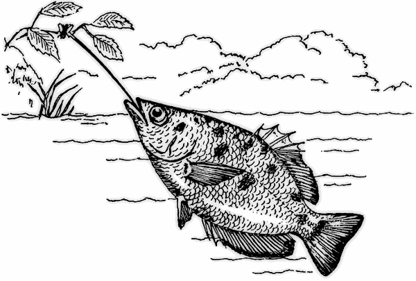 Fish black and white free black and white fish clipart 1 page of clip art