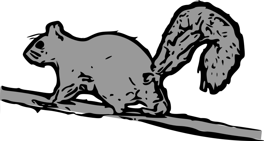 Squirrel  black and white funny squirrel clipart free images
