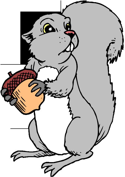 Squirrel  black and white squirrel clipart 3