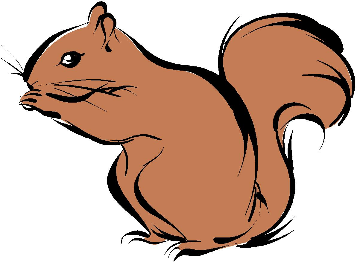 Squirrel  black and white squirrel clipart 7 2