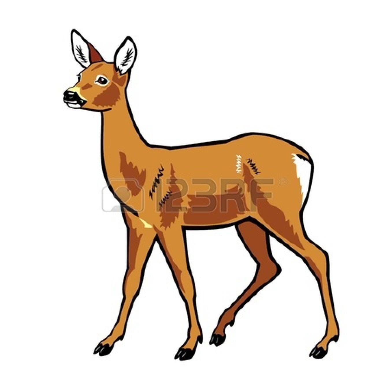 Baby deer top deer clipart free image