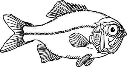 Piranha clipart piranha clipart fans 15