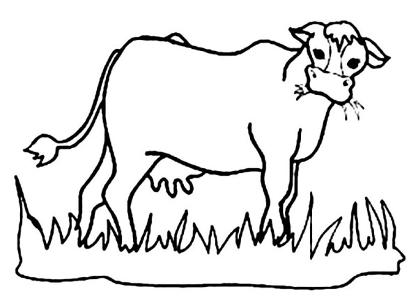 Grass  black and white cows eating grass clipart clipartfest