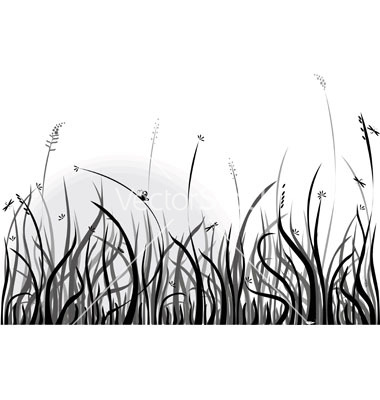 Grass  black and white grass clip art black and white clipart download free