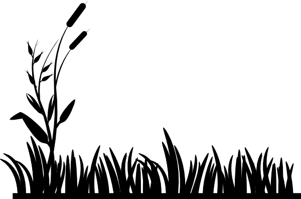 Grass  black and white grass clipart black and white free images