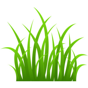 Grass  black and white grass clipart black and white google search school spring