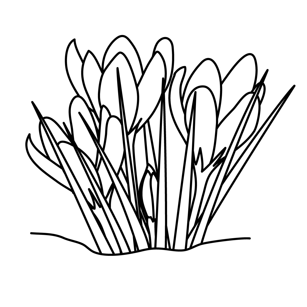 Grass  black and white grass clipart line drawing pencil and in color grass