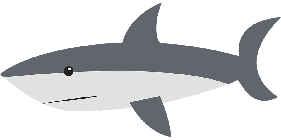 Shark black and white free vector graphic shark side swimming fin animal