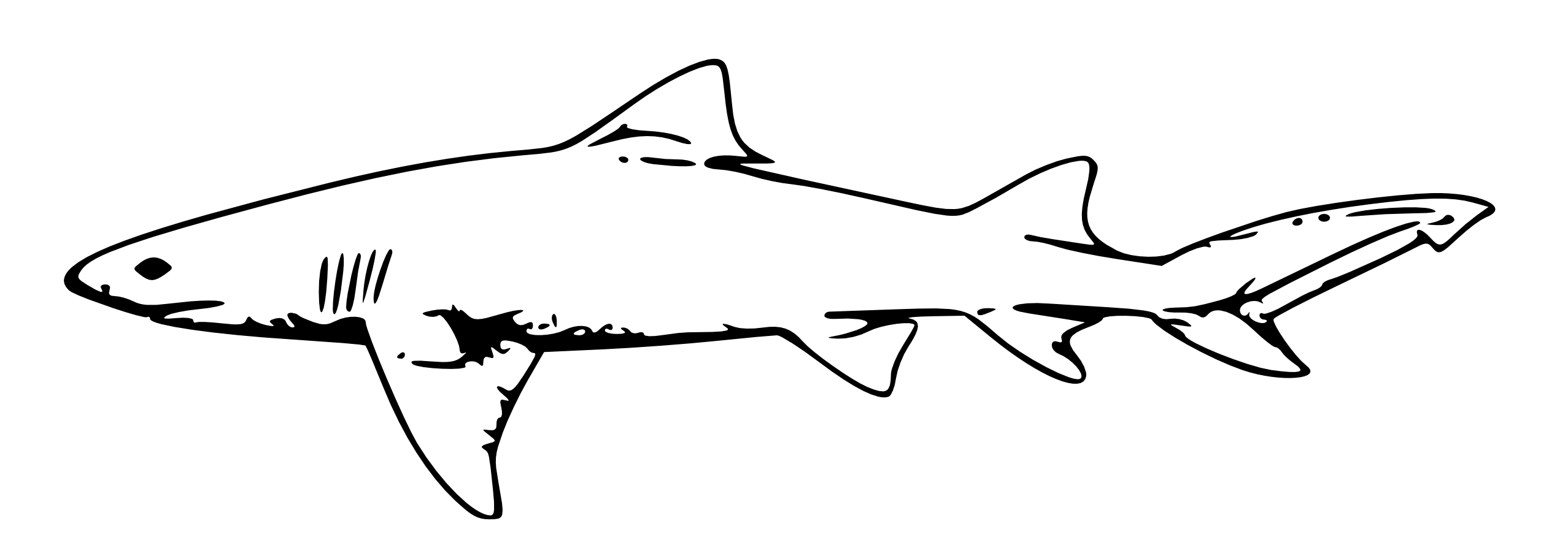Shark black and white shark clip art black and white free clipart images