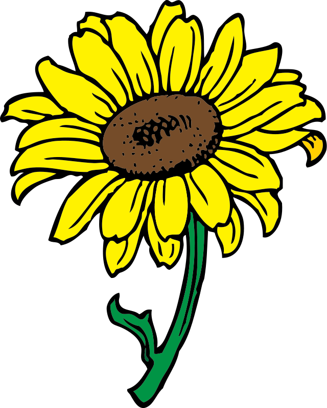 Sunflower  free bouquet of flower outline clip art free sunflower clipart