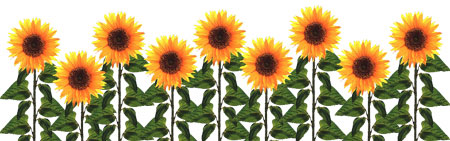 Sunflower  free sunflower clip art free printable clipart 2 6