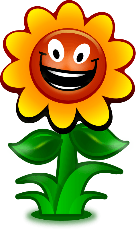 Sunflower  free sunflower school cliparts